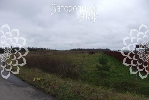 Московская область, Серпуховский р-н, Новинки-Бегичево