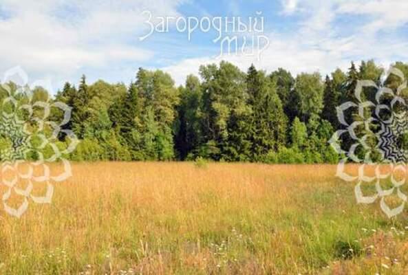 Московская область, Волоколамский р-н, Новопавловское