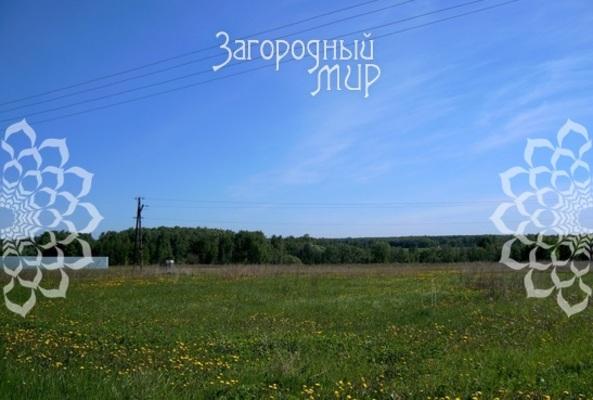 Московская область, Раменский г.о., Никитское